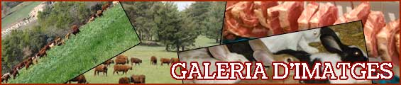 Galeria imatges i videos de Cal Monegal