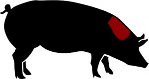 porc ecològic cap llom