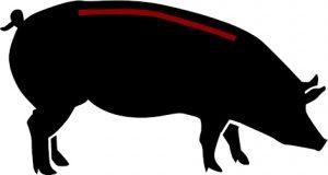 porc ecològic ossos espinada