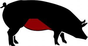 porc ecològic ventresca