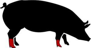 porc_peus_crusos
