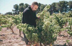 Vi blanc l'Abrunet de Frisach 75cl CELLERS FRISACH