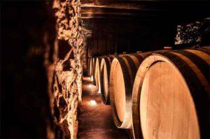 Vi blanc Origen 75cl ESTEVE I GIBERT